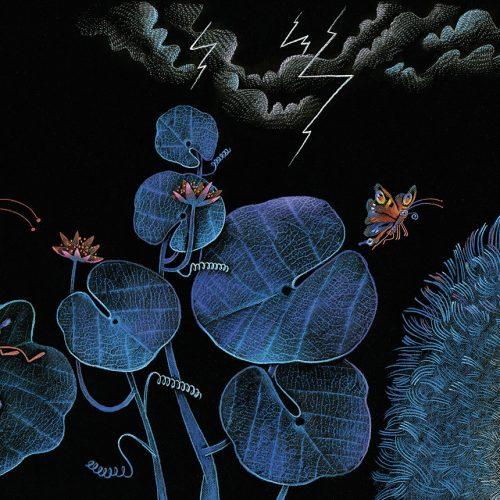 Lillys Reise durch die Nacht. Illu von Katharina Sieg