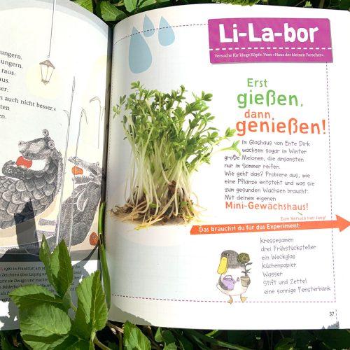 Li-La-bor: Mini Gewächshaus